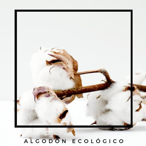 content_algodon-ecologico