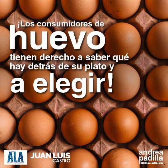 proyecto_huevos_ap1