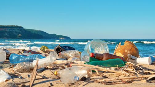 nuevos-envases-ecologicos-para-combatir-al-plastico-04