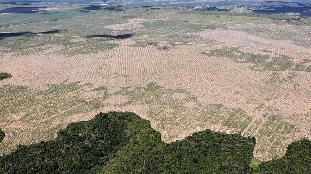amazonas-deforestacion-destruido-2064-1536x864