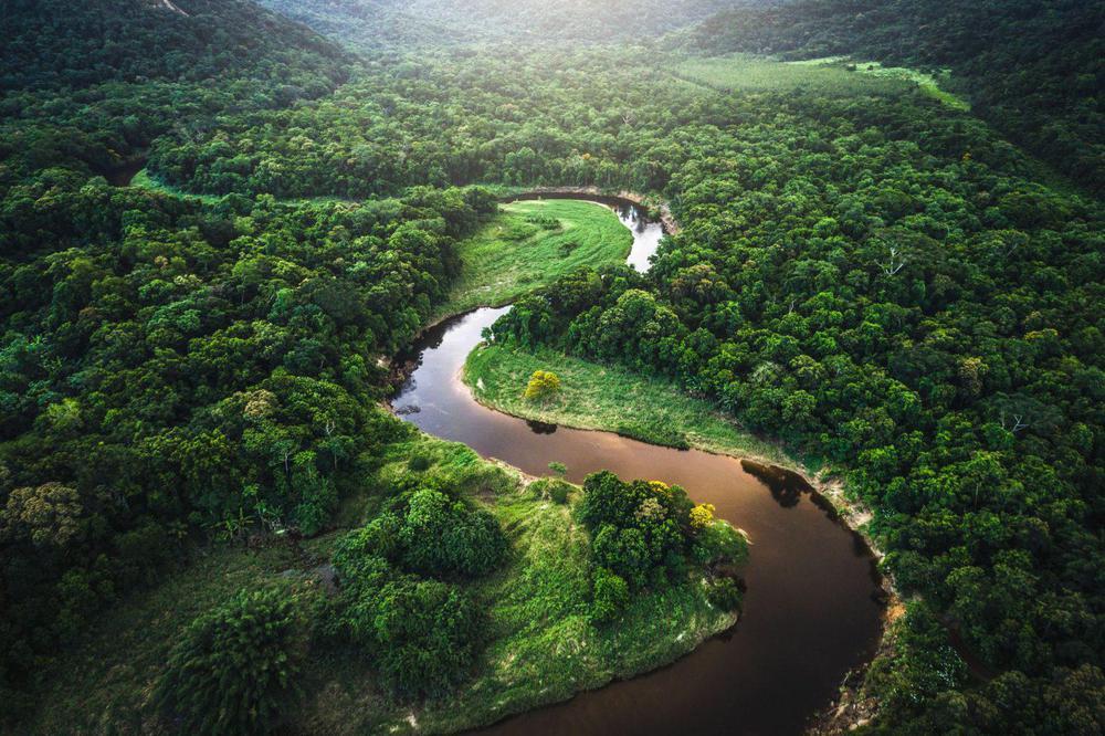 amazonas-ambiente.deforestacion.destruccion-2064-1536x1023