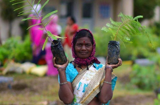 Plantacion-arboles-India3-e1594138128166