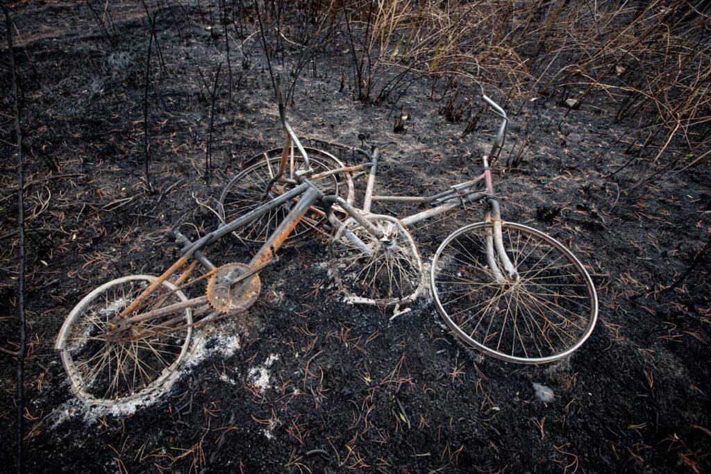 incendios_el_hoyo_columna_3-1024x683