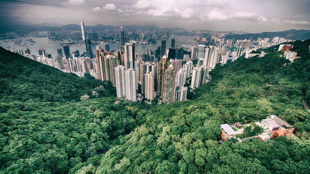produccion-humana-deforestacion-ciudades-planeta