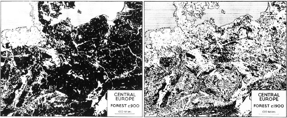 masa-forestal-europa-central-900-vs-1900
