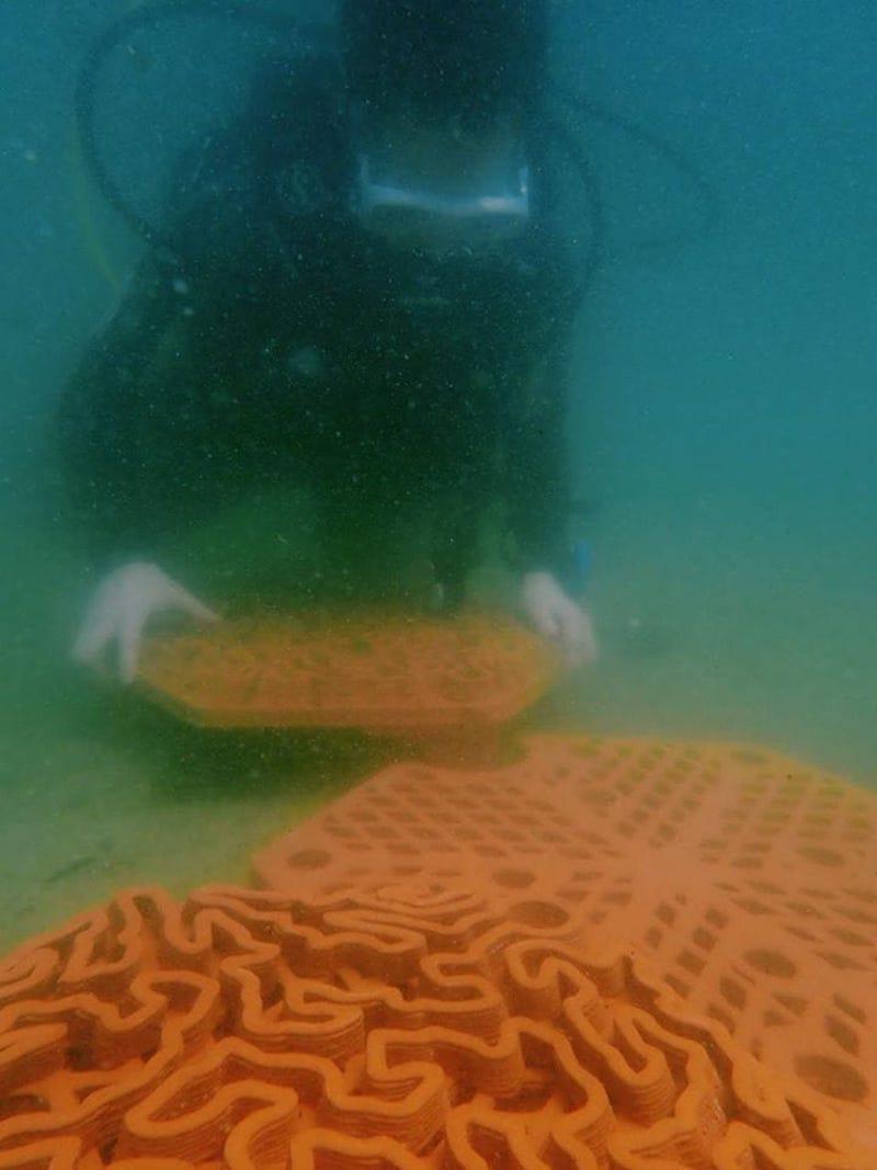 Paneles-de-terracota-coral