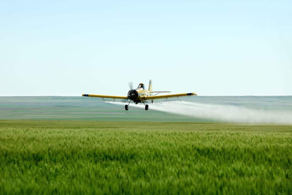 Pesticidas_86147347