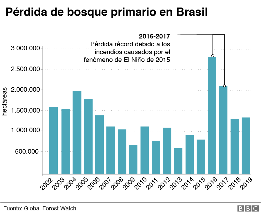 _112705122_perdida-bosque-primario-brasil-nc