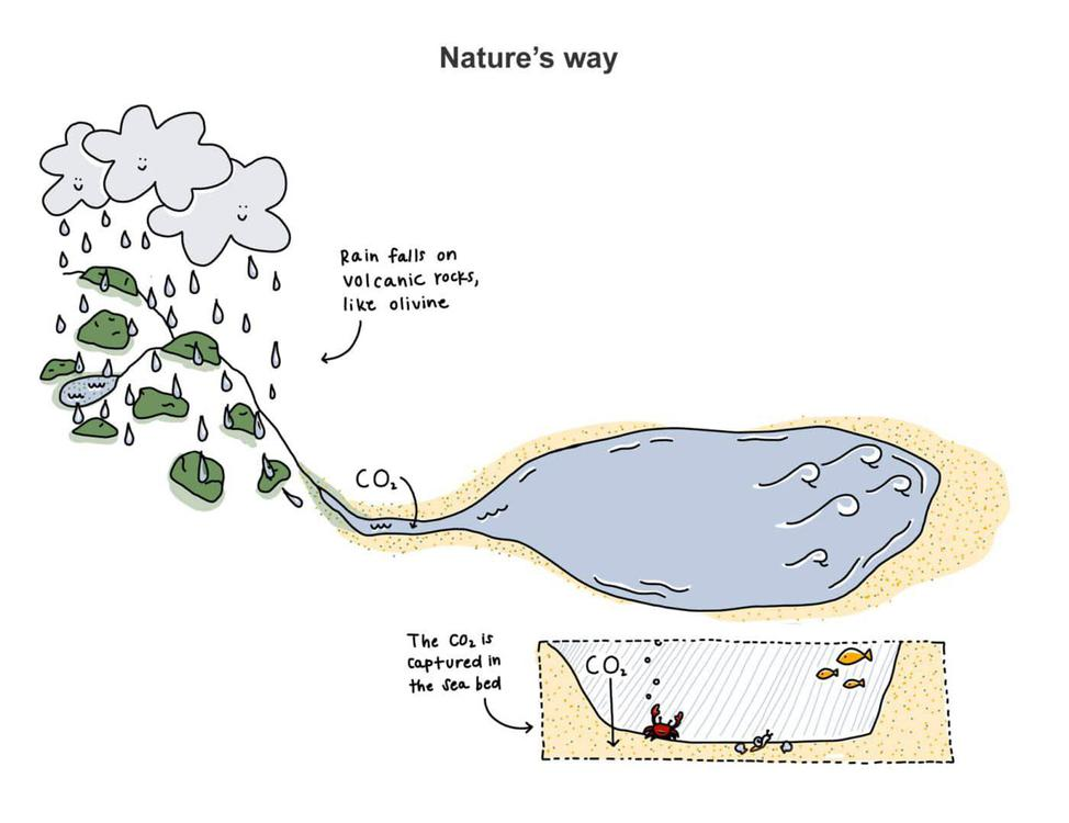 natures-way-for-carbon-dioxide-removal-carbon-cycle-inorgnaic-longterm-carbonate-silicate-1400x1078-1