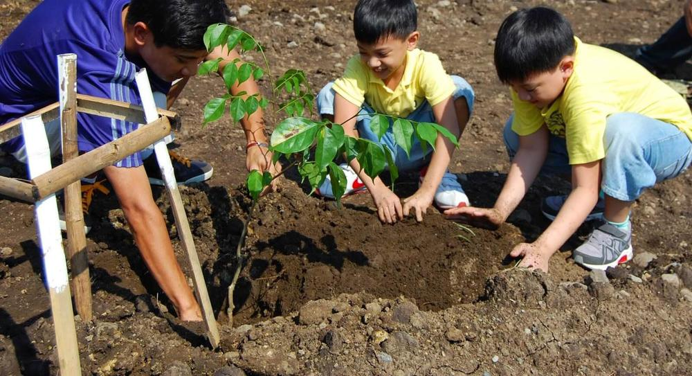 filipinas-reforestacion2-1-1