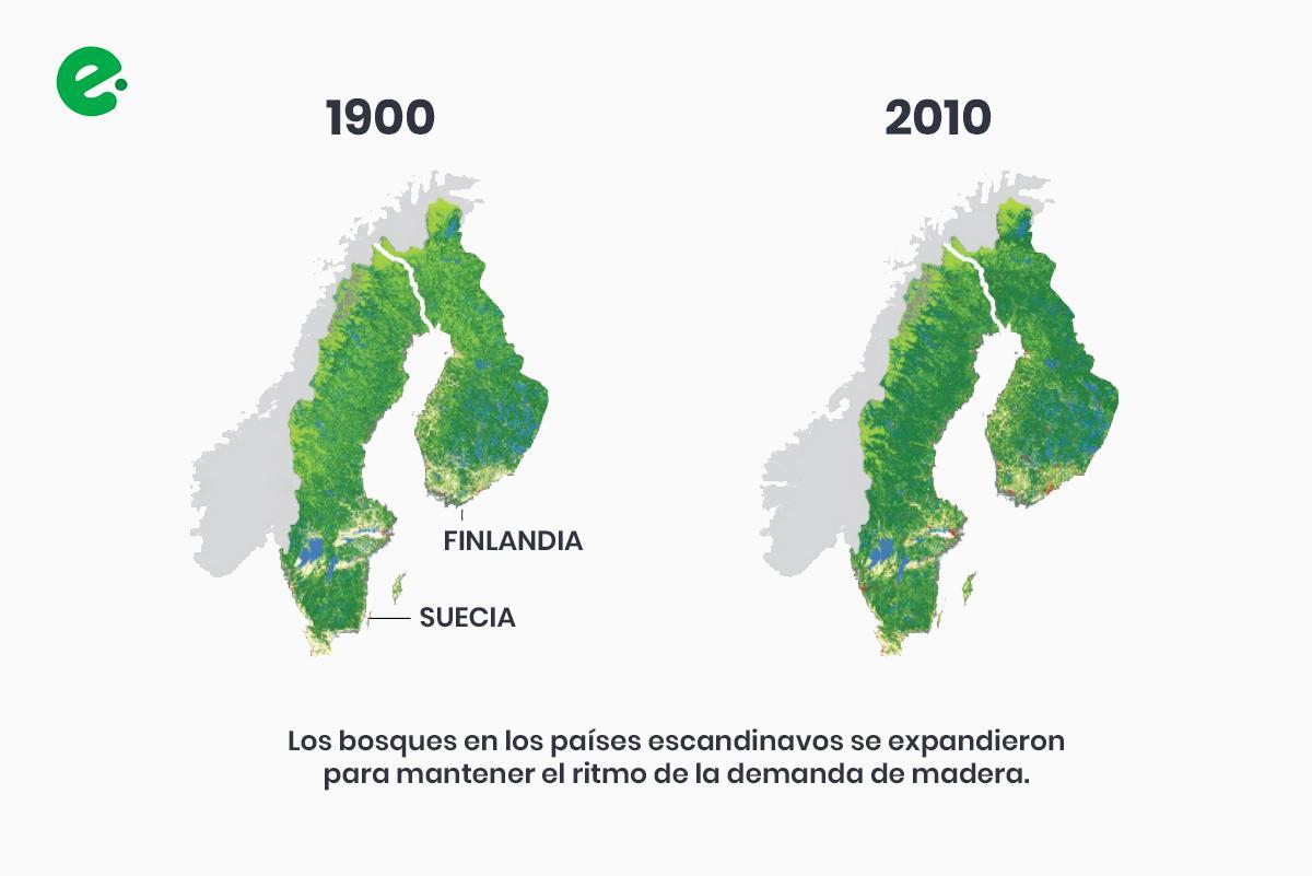 recuperacion-bosques-suecia-finlandia