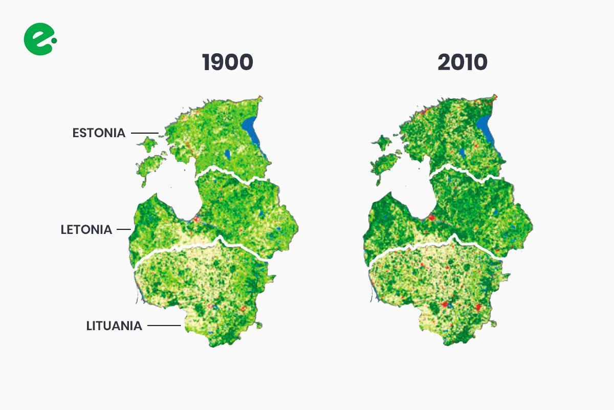 recuperacion-bosques-estonia-letonia-lituania