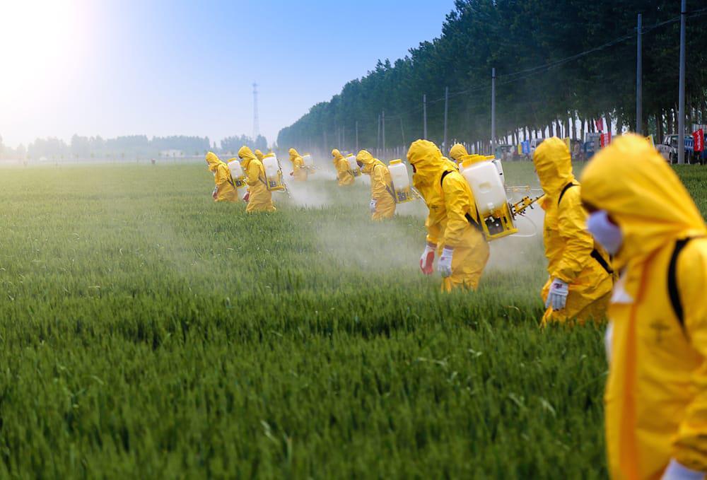 Pesticidas_547553083